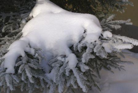 Снежная шапка-min