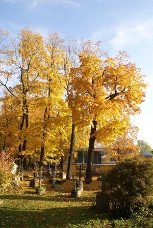 Осень у Смоленки...