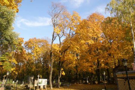 Осень у Смоленки.