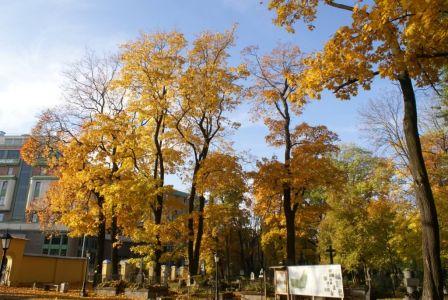Осень 13 октября
