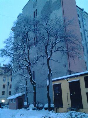 Зимний мотив